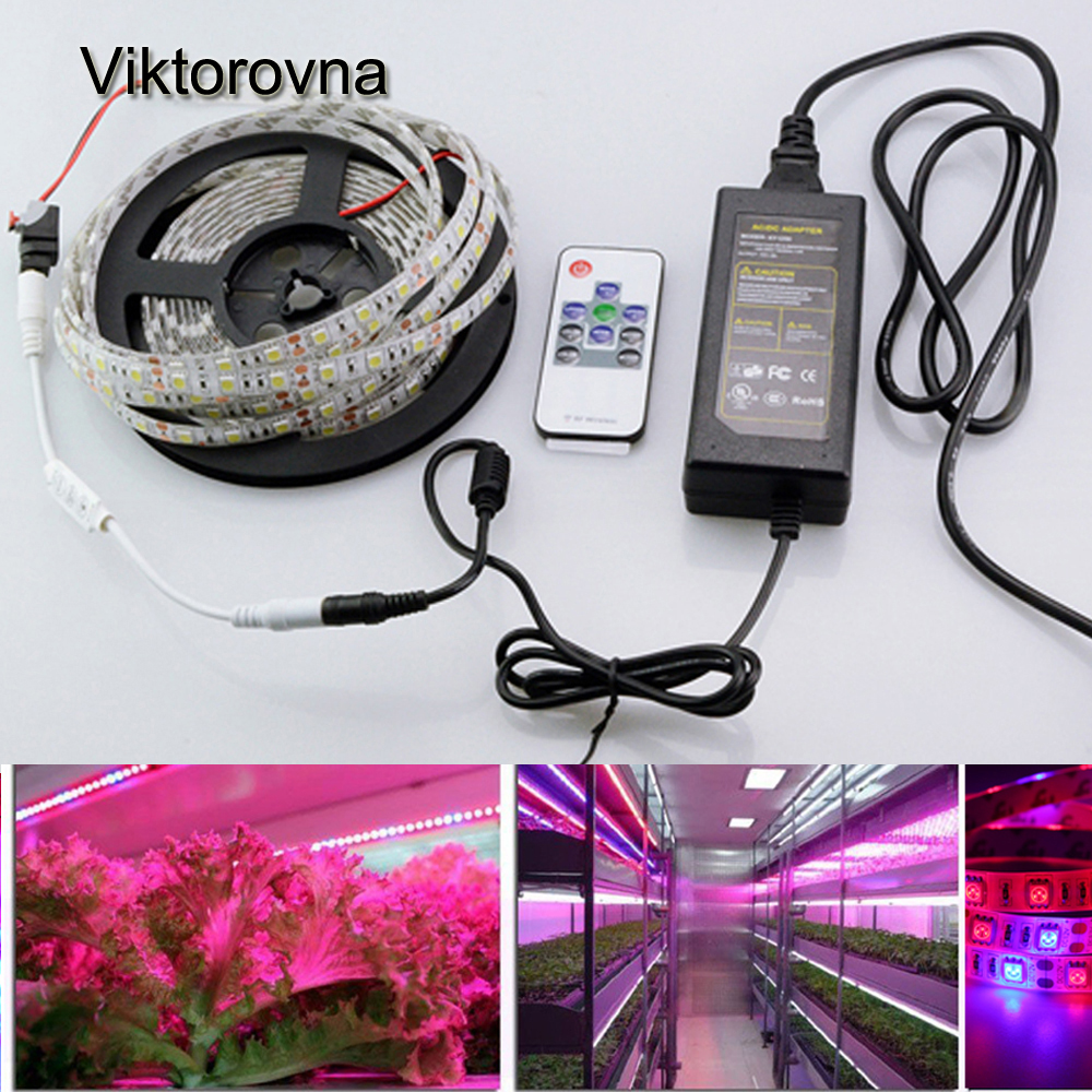 led grow lights dc12v growing led strip full spectrum aquarium greenhouse plant growth light set. Black Bedroom Furniture Sets. Home Design Ideas