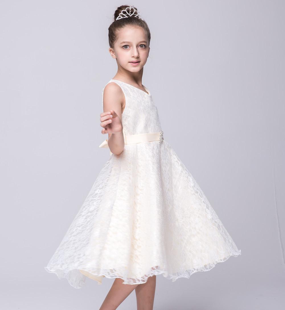 Fashion Girl Lace Dresse Princess Dress Performance Costumes Party ... 88f3431f093d