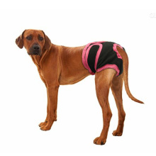 Dog Briefs Sanitary Physiological Menstrual Diaper