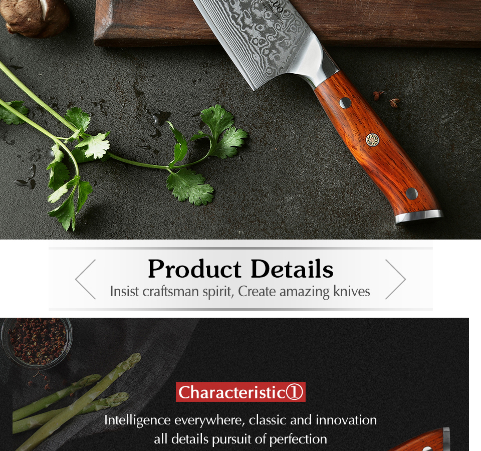 HTB10tu2a0zvK1RkSnfoq6zMwVXao - 8.5 inch Chef Knives High Carbon VG10 Japanese 67layer Damascus Kitchen Knife Stainless Steel