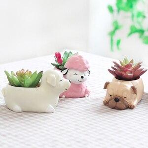 Image 3 - Roogo 8 kreatywny psy w stylu kreskówki wazon na kwiaty soczysty żywiczny śliczne ze śpiącym zwierzęciem do tyłu uczniowie doniczka prezent