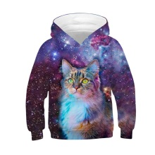 Raisevern Children Fashion 3D Sweatshirt Galaxy A Warrior Animal Cat Print Hoodies Fleece Inside Boy Girl Sport Pullover Tops