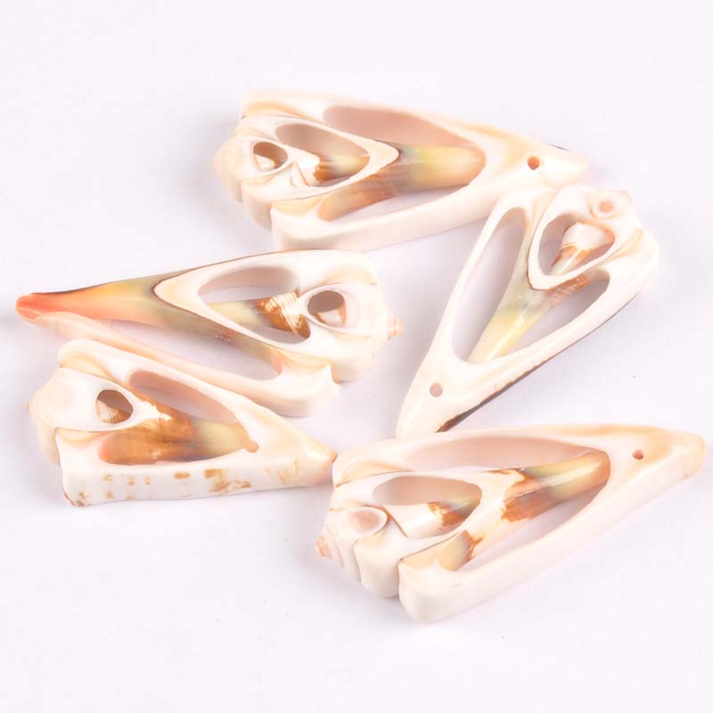 20-50mm Natural Trilateral Pattern Shell For DIY Handmade Pendant SeaShells Home Decoration 5pcs TR0132