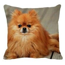 XUNYU 45 см x 45 м животное собака померанский льняной удобный чехол для подушки гостиной дивана декоративная наволочка YH011