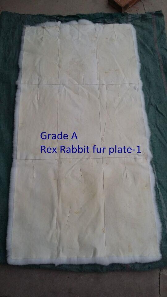 Poils courts moelleux et doux de la plaque de peau de fourrure de lapin rex/les tapis de lapin rex peuvent être teints