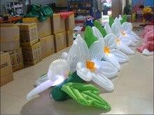 Nóng Inflatable Cưới 2015