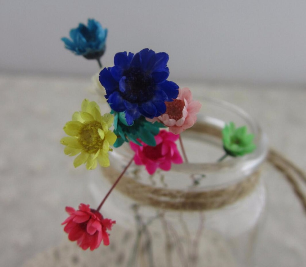 100pcs Mini Pressed Dried Daisy Flower For Epoxy Resin