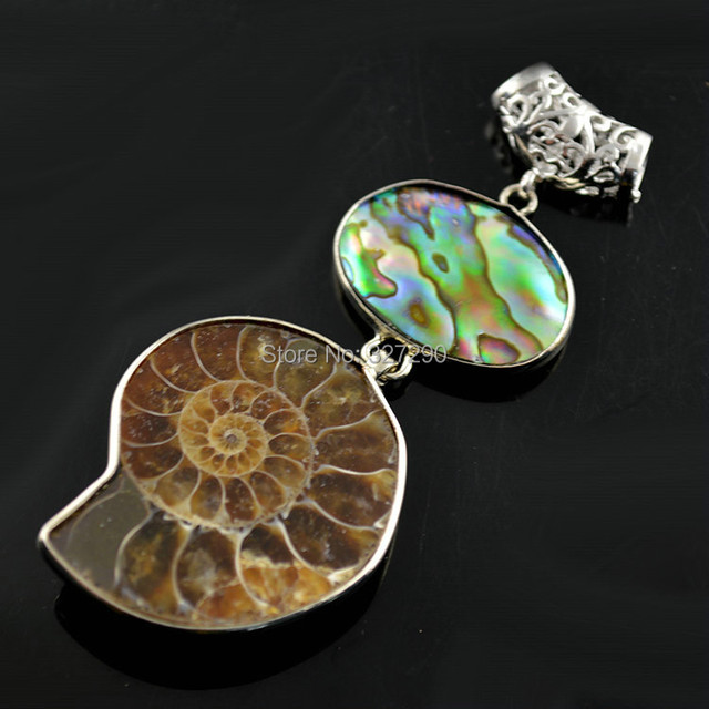 5pcs ancient nautilus fossil pendant with natural abalone shell 5pcs ancient nautilus fossil pendant with natural abalone shell inset women necklace pendant mozeypictures Gallery