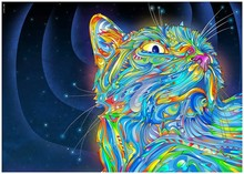 5D Diamond Painting Cross Stitch Colorful cat Crystal Needlework  Embroidery animal Full Decorative