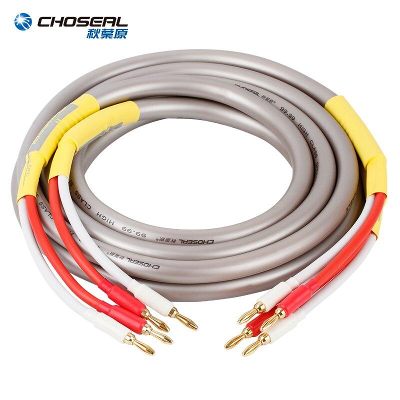 CHOSEAL HIFI haut-parleur câble Audio fil avec prise banane ligne Audio 2.5M
