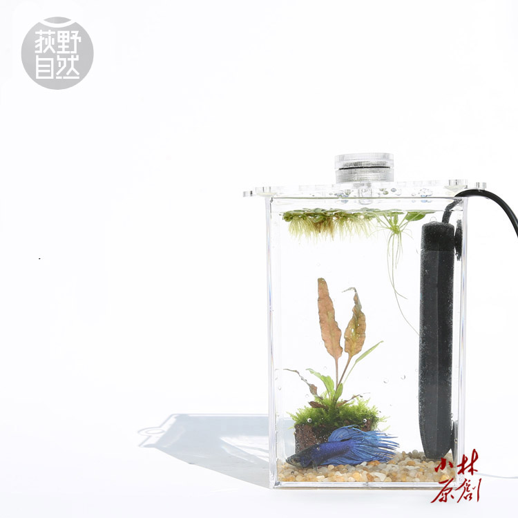Buy tropical betta fish mini nano arcylic for Fish aquarium stores