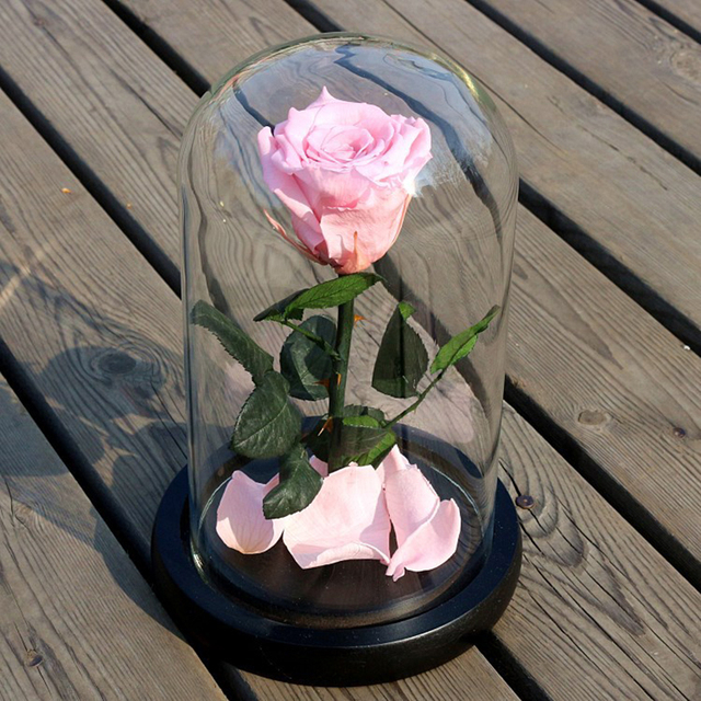 Party Gift Beauty and the Beast Red Rose Fallen Petals in Glass Dome on a Wooden Base for Christmas Valentine's Gifts#239781