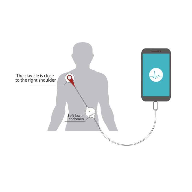 Pelvifine Mini แบบพกพาสวมใส่ ECG Monitor เครื่อง EKG Real time หัวใจ Electrode Holter สำหรับระบบ Android-ใน ความดันโลหิต จาก ความงามและสุขภาพ บน   3