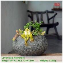 Ed оригинальное качество дизайн Фея Сад Открытый орнамент любовника Лягушка на функциональных камень горшок для суккулентов