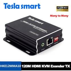 Tesla smart Viele zu viele IP Netzwerk KVM Extender Hohe Qualität 120m USB HDMI IR KVM Extender durch CAT5e /6 TCP/IP (Nur TX)
