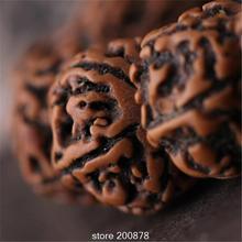 TSB0017 Тибетский старый промасленный рудракша семена Бодхи свободные бусины непальский Kingkong Бодхи сплюснутые бусины 10 бусин Лот