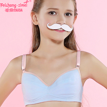 56fdf8111ce5c Free Shipping Feichangzimei Teen Girl Underwear Cotton A Cup Training Bras  2 Pack for Pubescent Girls