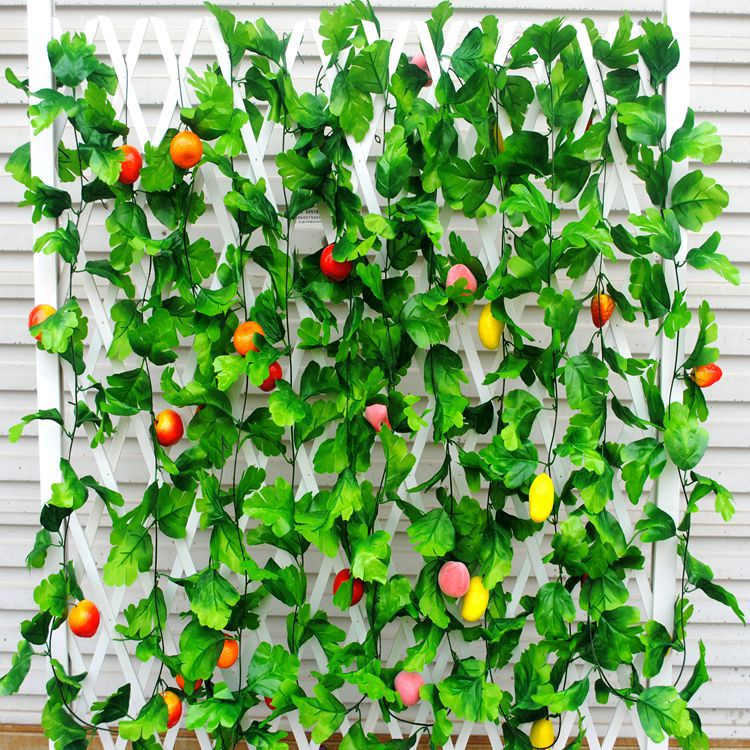 fruit vine picture  more detailed picture about hanging fruits, Beautiful flower