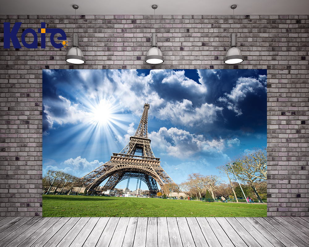 10X10FT Kate Eiffel Tower Photo Backdrops Blue Sky Wedding Background Photo Studio Sunlight Scenic Photography Backdrops blue sky чаша северный олень