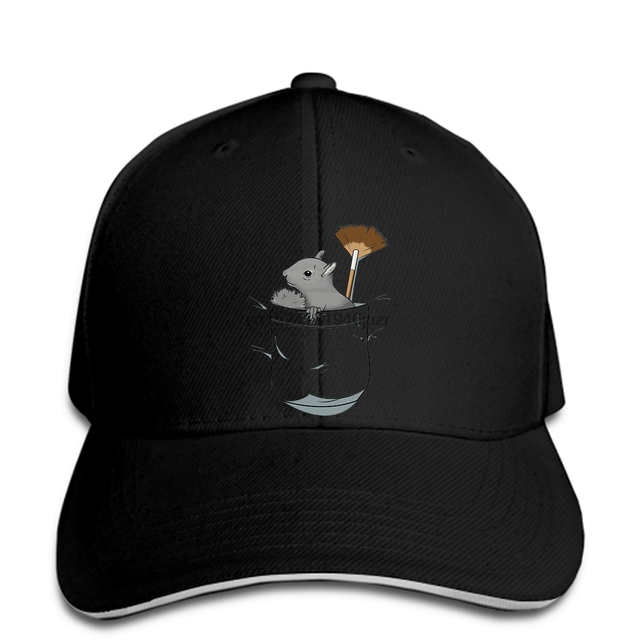 8d7f2dbecefde hip hop Baseball caps Custom Printed hat Men PeaPod The Pocket Squirrel Bob  Ross women snapback