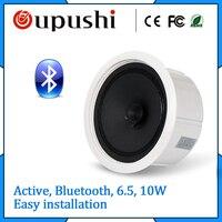Bluetooth Embedded Speaker Ceiling Speakers Loudspeaker With Power Amplifier Board