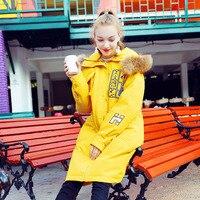 Fashion Natural Raccoon Fur Collar Down Coat Women Winter Jacket Hooded Long Parka 2019 New Arrival Fun Print Womens Down Jacket