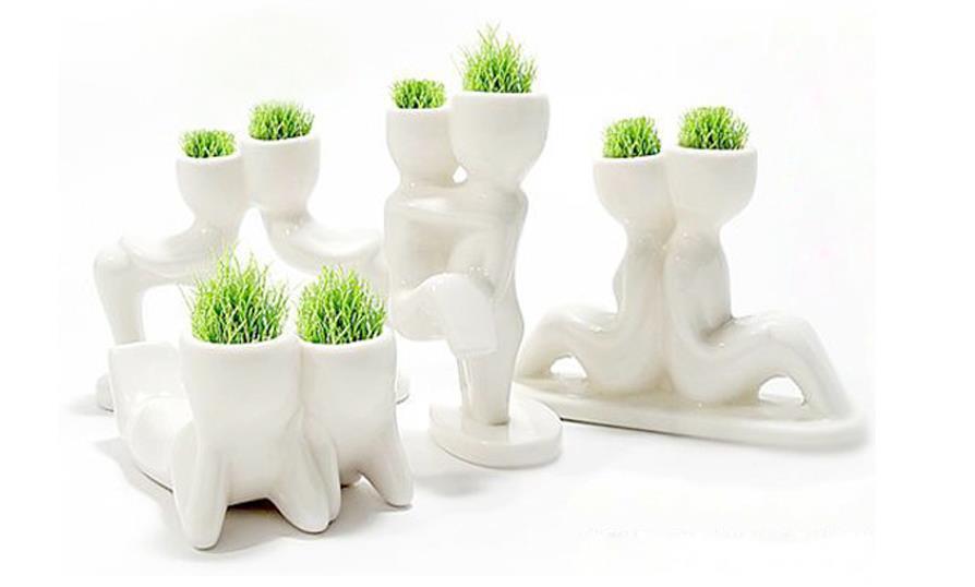 white man grass planting mini grass potted creative office miniature landscape plants fashion seeds indoor plants beautifying office bonsai grass pots planters mini