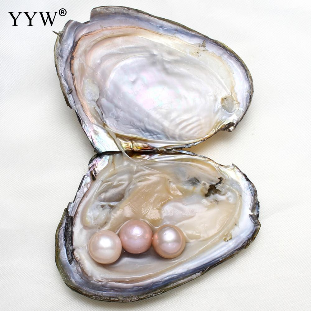 Love wish pearl 11-12mm Mussel Shell Freshwater oyster in vacuum-packed for party Jewelry Gifts one pearl oyster with one pearl
