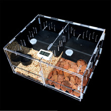 Acrylic Pet Reptiles Tank Terrarium Insect Spiders Lizard Breeding Box House Cage 2 Grids Pet Reptiles Accessories Terrariums(China)