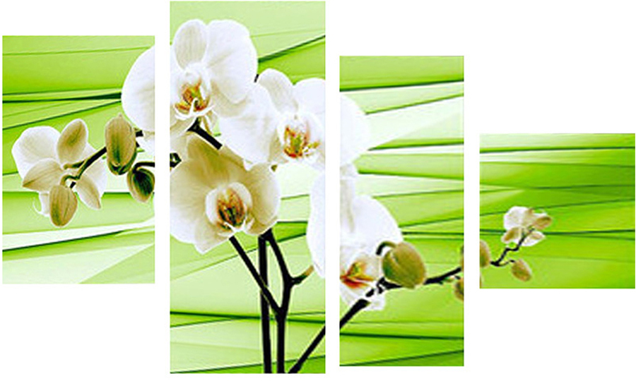Floral//Flower//Nature White Orchids Needlepoint Kit or Canvas