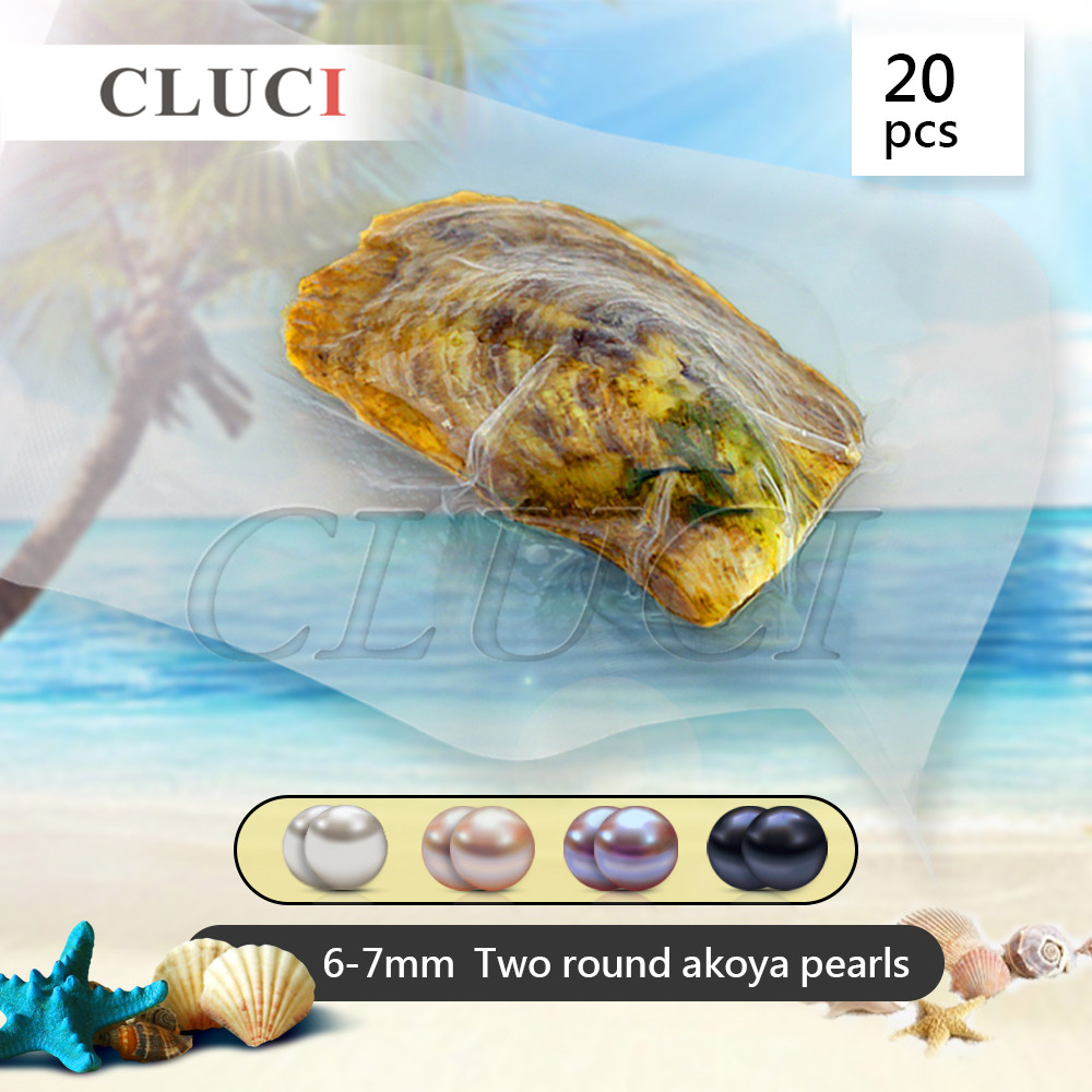 CLUCI Funning gift 6-7mm round Akoya double pearl in oyster 20pcs, Wish Pearls Best for Anniversary, Birthday, Wedding Gift cluci free shipping get 40 pearls from 20pcs 6 7mm aaa blue round akoya oysters twins pearls in one oysters
