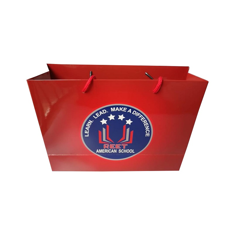 Professional Factory Made Fancy Paper Bag With Custom Logos W30cm*H22cm*D10cm