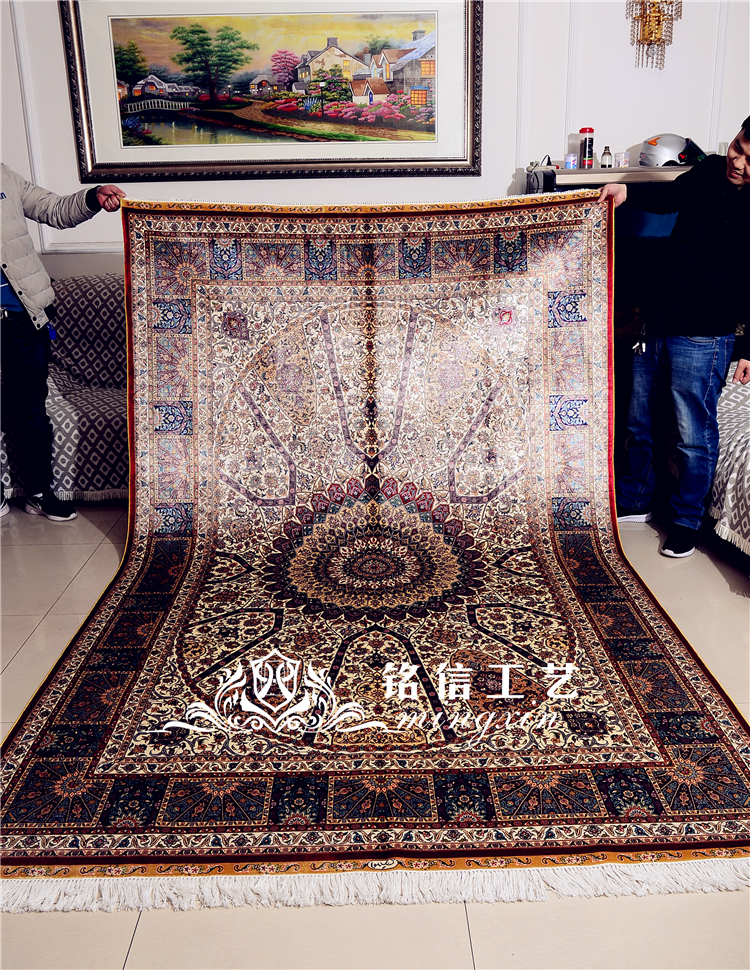 6'x9 'tapis persan en soie Design tissé à la main classique canapé zone tapis