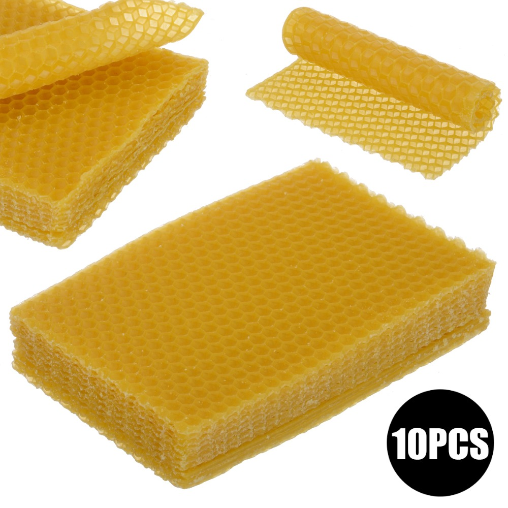 10 PCS Beekeeping Honeycomb Wax Frames Foundation Honey Hive Equipment Tool