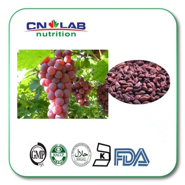500g100% natural extract antioxidant food additives opc 95% high quality grape seed extract beverages and food additives ternate pinellia extract