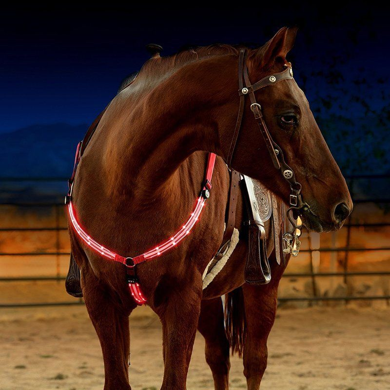 Image 2 - LED Horse Harness Breastplate Nylon Webbing Night Visible Horse Riding Equipment Paardensport Racing Cheval Equitation-in Halters from Sports & Entertainment