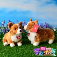 बच्चों के लिए प्यारा Corgi कुत्ता आलीशान खिलौने सिमुलेशन पशु Corgi गुड़िया उपहार