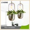 Pastoral Oval Glass Flower Pot Iron Flower Plant Potted Chandelier for Terrace Restaurant Bar.