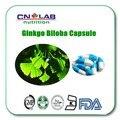 Ginkgo biloba extracto de 24% de alta calidad orgánica inmune y anti-fatiga Ginkgo Biloba cápsula 500 mg * 60 unids