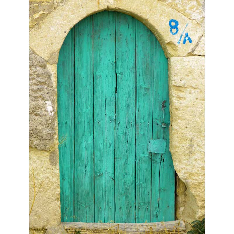 Green door in stone house photo backdrop fleece photography backdrops for portrait studio photography background F