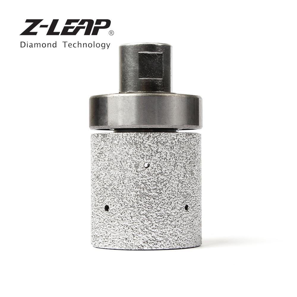 Z-LEAP 2