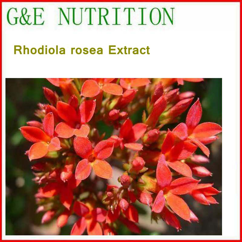 100% Natural& High quality Rhodiola rosea/ Rhodiola sachalinensis Extract with free shipping, skin care natural water sorghum pigment extract 300g lot