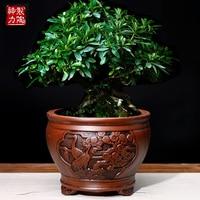 Purple Clay Flower Pots Flower Pots Succulents Bonsai Macetas Classical Flower Clivia Pots Unglazed Ceramic Bonsai Pots