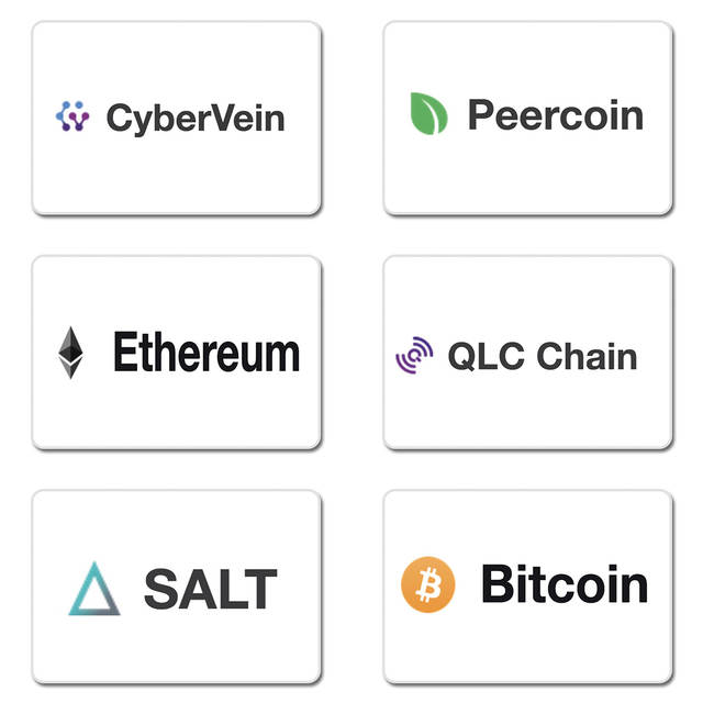 CyberVein crypto review
