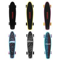 Arch Design Four Wheeled Skateboard Plastic Long Board Freestyle Skateboard Skate Deck Cool Adult Teenager Skateboards
