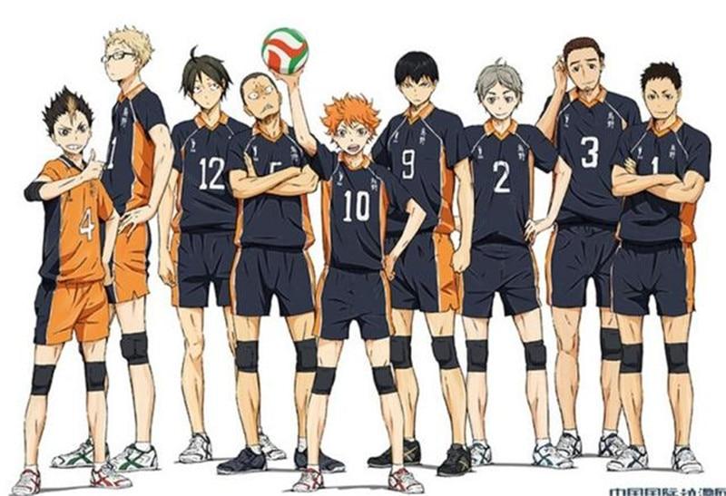 11 Styles Haikyuu Cosplay Costume Karasuno High School Volleyball Club Hinata Shyouyou Sportswear Jerseys Uniform