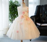 3D Flower Appliques Girl Wedding Dress Champagne Christening Birthday Party Pageant Dress Child Bridesmaid Clothing