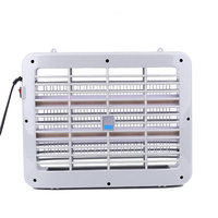 220V 1W Mosquito Killer Lamp Indoor Pest Fly Bug Mosquito Killing Zapper Lamp