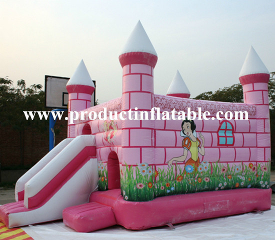 Inflatable Castle For Rent Philippines