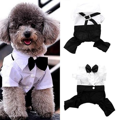 Hot! Pet Dog Cat Clothes Prince Tuxedo Bow Tie Suit Puppy Costume Jumpsuit Coat S-XXL 456fwr32